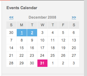 Website Calendar with Style