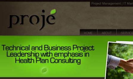 projeinc.com