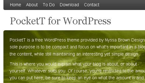 nyssajbrown.net