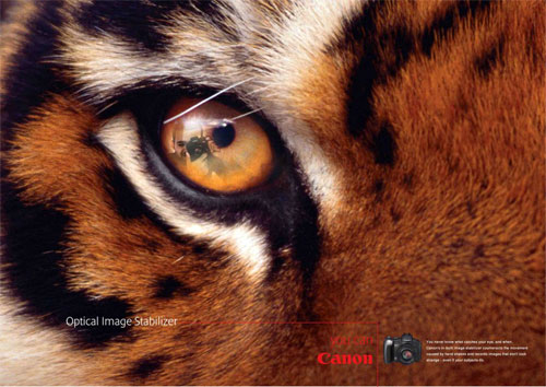 Canon Image Stabilizer Advertisements